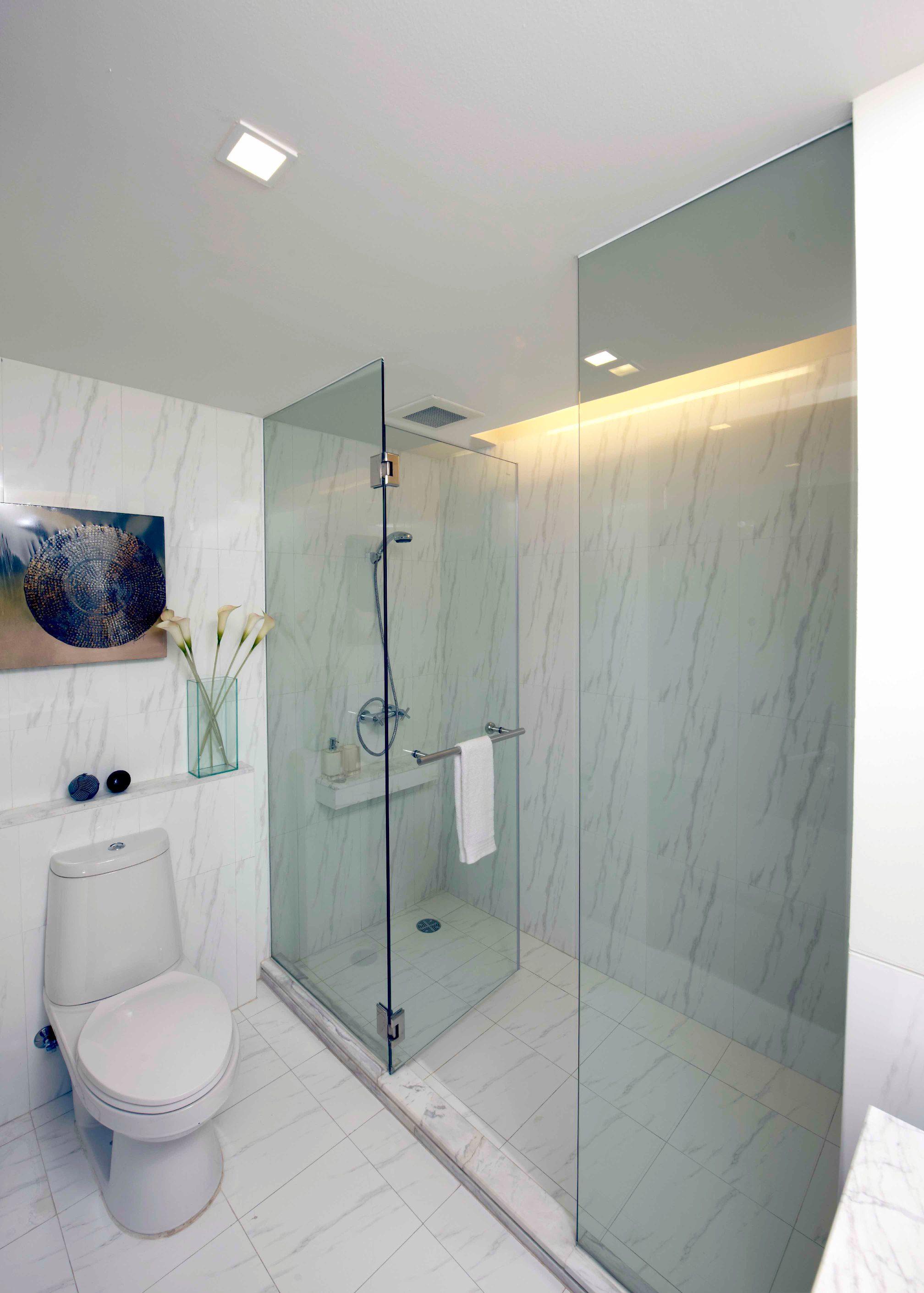 DBC090H-GS Frameless Shower Room Opening door (B-Hinge) 10 mm ...
