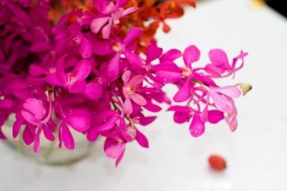 Gl Flowery 021 24x36 Pm