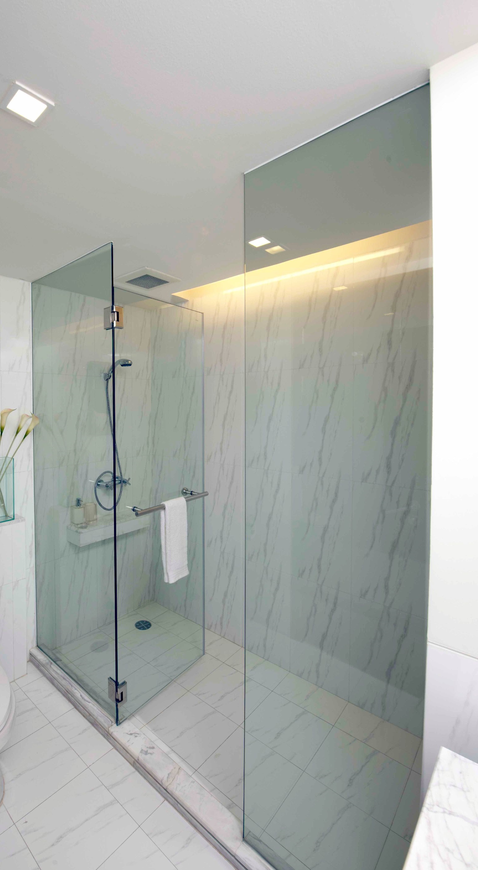 DBC090-GS Frameless Shower Enclosure Opening door (B-Hinge) 10 mm ...